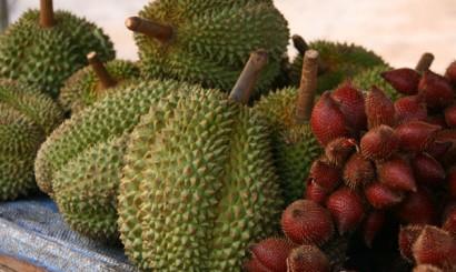 Durian – najsłynniejszy owoc strefy tropikalnej. Jego odór może konkurować ze smrodem uliczek Bangkoku późnym wieczorem, tudzież psującą się rybą, choć smak ma swoich wielbicieli.