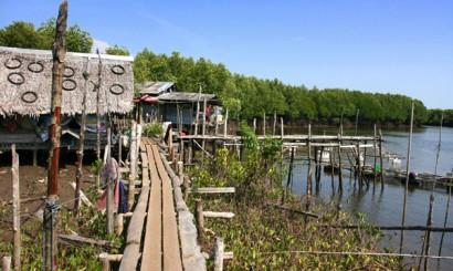 Zabudowania wioski rybackiej, położonej na skraju lasu mangrowego na Koh Lanta Noi.