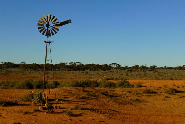 Z powodu opadającego poziomu wód gruntowych pompy wiatrowe o małej mocy są dziś raczej elementem kompozycji krajobrazu niż gwarancją dostarczenia zwierzętom wody.