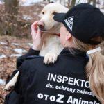 Współpraca z OTOZ Animals