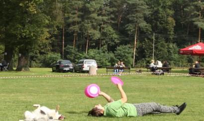 10_piknik