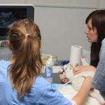 Diagnostyka ultrasonograficzna układu moczowego z Akademią Fredwet