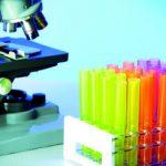 Biolodzy odkryli nowe wirusy u małych ssaków