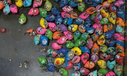 Malowane kraby, kolejny przejaw artystycznej twórczości tubylców w dziele udoskonalania nudnej przyrody.