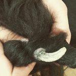 Róg skórny na tle przebiegu rogowiaka lejkowego u psa – opis przypadku