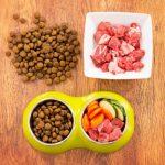 Zalety żywienia psów i kotów karmami holistycznymi.  Czym są karmy holistyczne i dlaczego warto zwrócić na nie uwagę?
