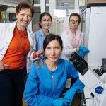 Naukowcy z Olsztyna wskazali gen odpowiedzialny za bliznowe gojenie ran