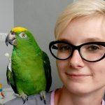 Niewielu lekarzy w Polsce zajmuje się ptakami