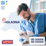 Praca w Holandii dla lekarza weterynarii OD ZARAZ!